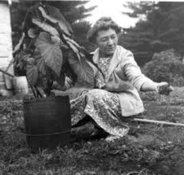 Мария Луиза Мейёр, 29 августа 1880 - 16 апреля 1998, прожила 117 лет, 230 дней. Долгожительница появилась на свет в канадском Квебеке.