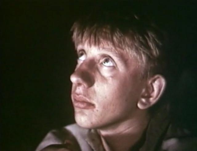 После ухода в армию Алексею начали поступать предложения от режиссеров, но принять их он уже не мог. На этом его кинокарьера закончилась.