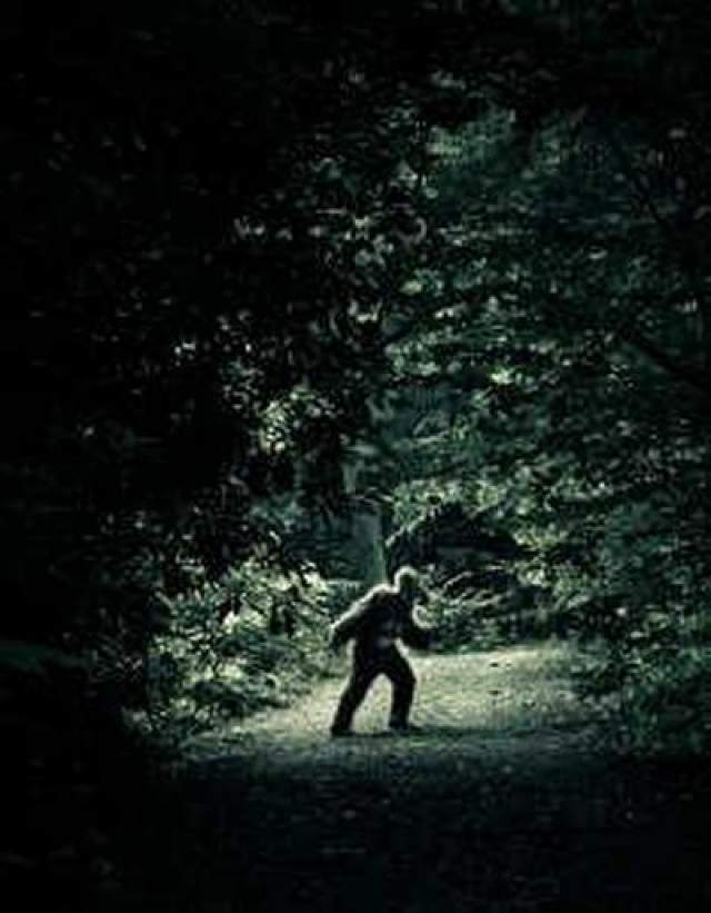 """Букит-Тимах Во время Второй мировой войны японские солдаты, оказавшиеся в Сингапуре, увидела """"необычную версию"""" Снежного человека. Они говорили, что видели примата, покрытого седыми волосами, ростом около 2-х метров в тропическом лесу Букит-Тимах."""