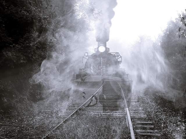"""Затем он """"вдруг вспомнил, в какой ужас пришли моденские монахи, когда впервые увидели железное чудовище, изрыгающее черный дым"""". """"Теперь я понял, что они пережили: не просто страх, но некое животное чувство. Я выскочил из вагона и спрыгнул на землю, благо поезд еле тащился. Краем глаза я заметил, что вместе со мной спрыгнул и другой пассажир. Мы оба ударились о землю. И больше я ничего не помню"""", - поведал пассажир поезда."""