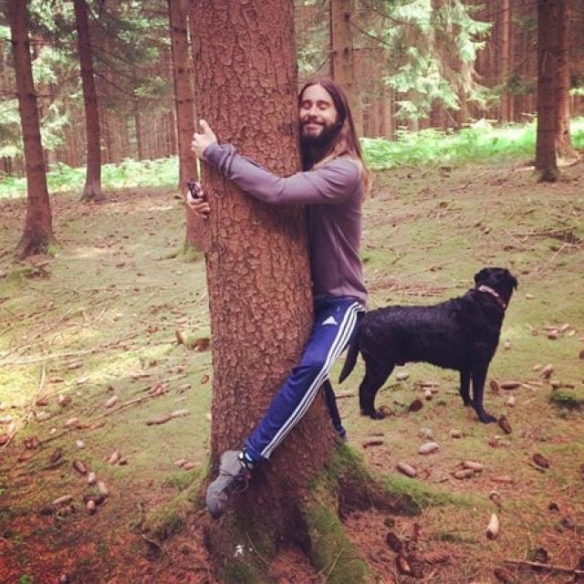 Джаред Лето и... дерево