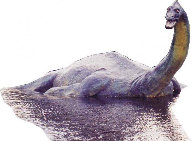 В 1957 году миссис Констанс Уайт, многие годы проживавшая на берегу озера, выпустила книгу «Это более чем легенда», в которой было собрано 117 рассказов «очевидцев», якобы видавших Несси. В книге писалось, что во всех рассказах внешний вид животного описывался примерно одинаково: толстое массивное тело, длинная шея, маленькая голова.