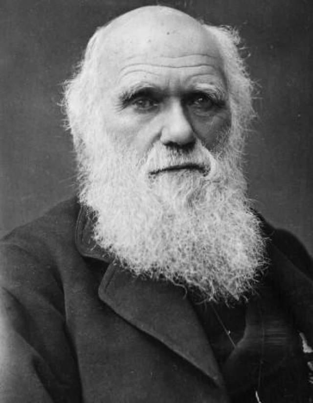 Чарльз Дарвин Дарвина считали посредственным учеником. Он отказался от медицинской карьеры и собирался учиться в духовной школе. Но, излучая природу, Дарвин нашел свое призвание.