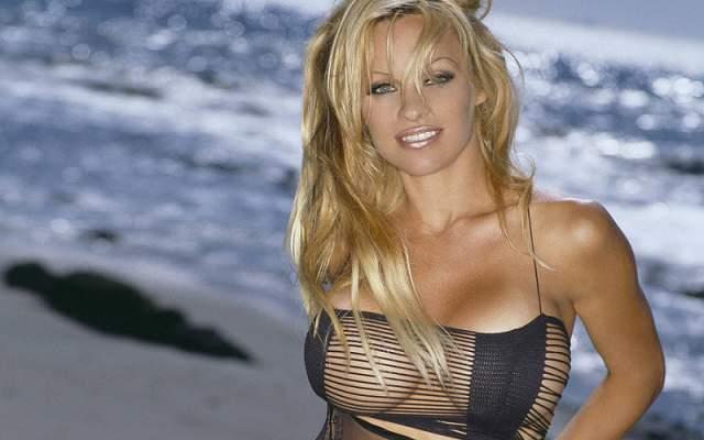 """После 1992 года, когда она уже была звездой Playboy и снялась в """"Спасателях Малибу"""", звезда снова пошла к врачам, сделав себе """"пятерочку"""". Причем свои б/у импланты она продавала на аукционах, не стесняясь своих операций и """"искусственности""""."""