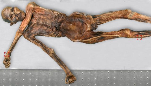 Ледяной человек Эци. Находка стала старейшей европейской мумией, возраст которой насчитывал около 5200 лет. Тело, получившее имя Эци, было обнаружено 19 сентября 1991 года парой немецких туристов во время прогулки по Тирольским Альпам.