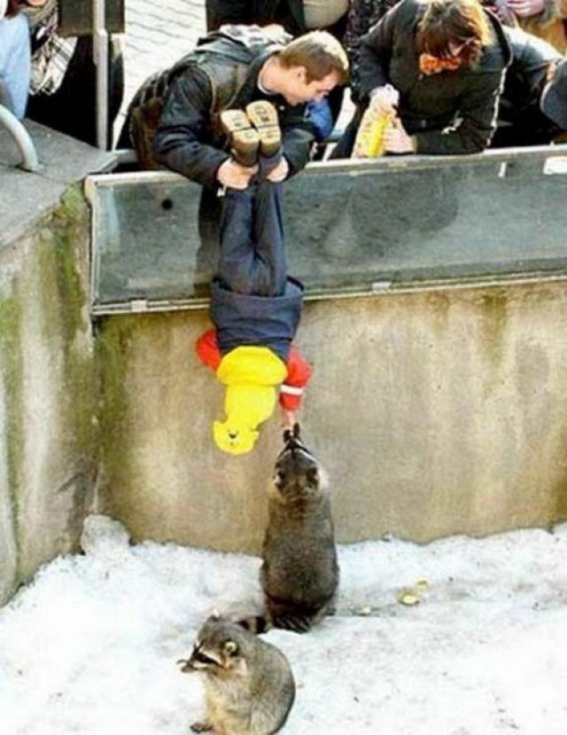 Отец поможет ребенку рассмотреть понравившееся поближе.