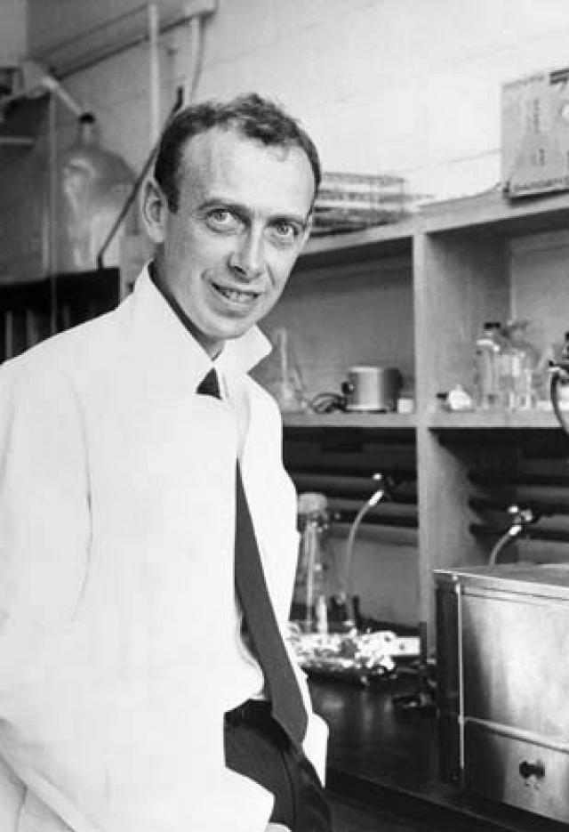До 1953 года учёные затруднялись в выяснении формы и структуры молекулы ДНК, пока профессор Джеймс Уотсон из Университета Индианы не увидел сон, в котором перед ним явственно предстала двойная спираль.