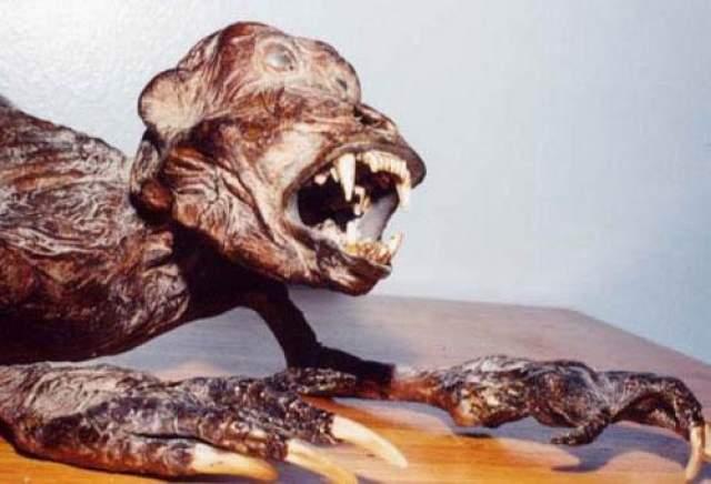 Его скульптуры созданы из реальной плоти некогда живых рыб и существ, из реальной чешуи, из костей и скелетов.