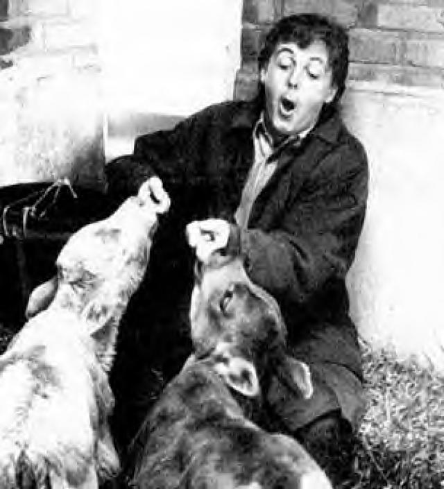 Вместе с первой женой Пол участвовал в акциях и демонстрациях, а к 1980 году пара полностью отказалась от продуктов животного происхождения.