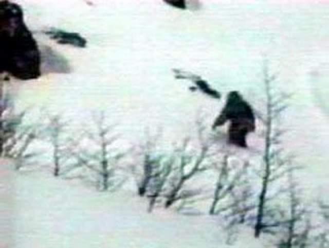 В 70-х годах прошлого века появились сообщения о встречах с гигантскими человекоподобными существами (бигфут) в США.