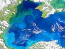Ученые NASA зафиксировали изменение цвета Черного моря