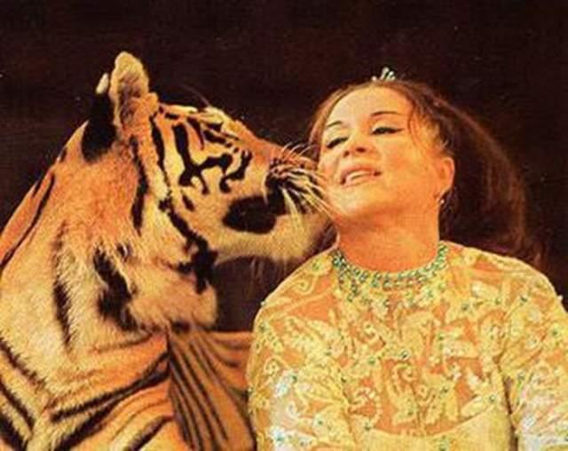 """Маргарита Назарова, 1926-2005. Дрессировщица, звезда фильма """"Полосатый рейс"""" пострадала из-за своей работы. Прыгая, тигр задел голову Назаровой, оставив там глубокие шрамы."""