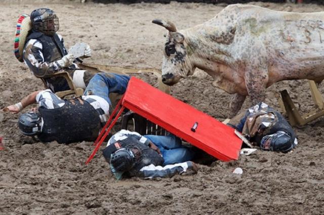"""""""Тюремное родео"""". Участники на поле играют в покер, когда выпускают быка. А выигрывает тот, кто остается сидеть на стуле."""