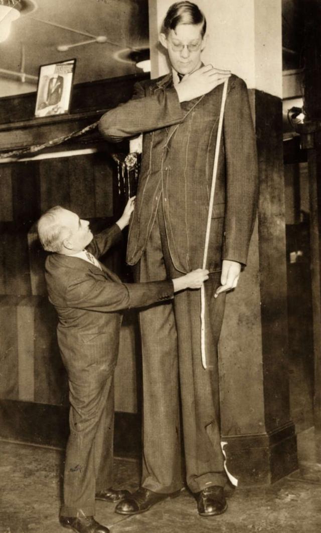 Его рост составлял 2 метра 72 сантиметра. Страдавший опухолью гипофиза и акромегалией, Уодлоу рос всю свою короткую жизнь.