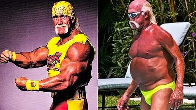 """Халк Хоган IGN называет Хогана """"самым узнаваемым рестлером в истории"""". Он является 12-кратным чемпионом мира в тяжелом весе и 6-кратным чемпионом в супертяжелом весе WCW."""