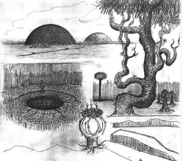 В 1970-е годы якутские уфологи собирали и документально зафиксировали свидетельства местных жителей. К примеру, они утверждают, что из открывающихся крышек-полусфер раз в 100 ет вырываются столбы и шары огня, направленные демоном Уот Усуму Тонк Дуурай.