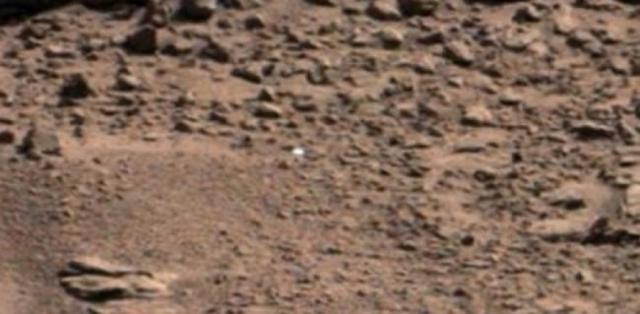 Округлых объектов было несколько, но НАСА никак не прокомментировало находку астрономов-любителей.