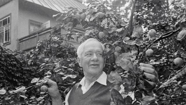 Умер Корней Иванович 28 октября 1969 года от вирусного гепатита.