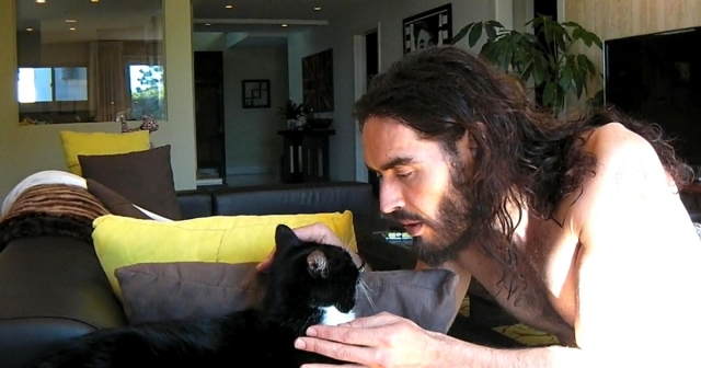 Рассел Брэнд. Эксцентричный актер - большой любитель кошек. Его кота зовут в честь предыдущего героя нашего репортажа - Моррисси.