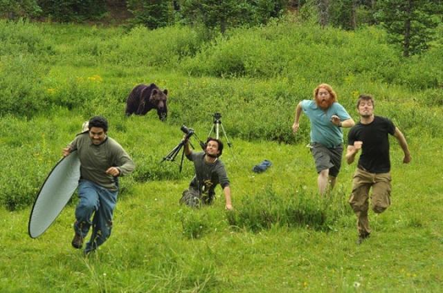 Фотографы убегают от медведя. Группа фотографов якобы убегает от внезапно вышедшего из леса медведя.