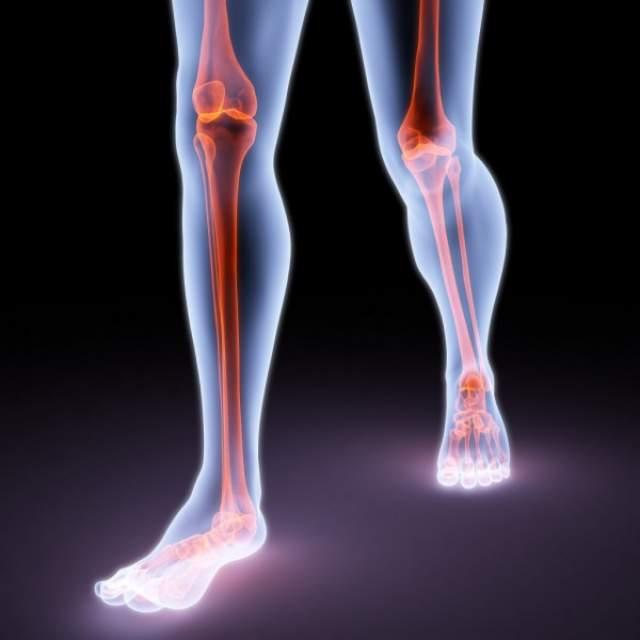 Кубический метр кости способен выдержать вес в 10 тыс. кг. Это вес пяти стандартных грузовых автомобилей. При этом кости на 31% состоят из воды.