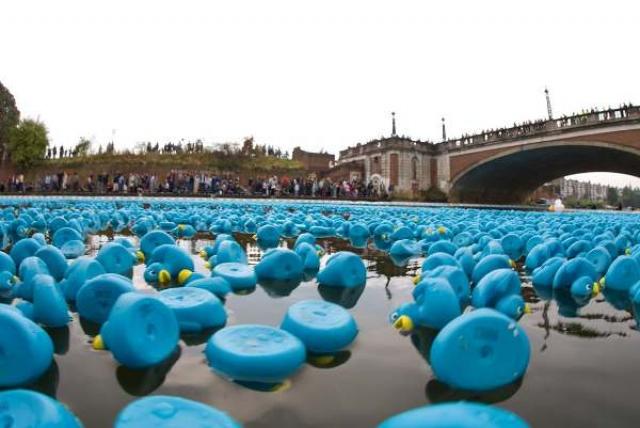 Гонки резиновых уточек . Крупнейший чемпионат по этому виду спорта проводится в Сингапуре. Купив игрушку, нужно написать на ней свое имя и надеяться на благосклонность фортуны. По сигналу судьи всех собранных уточек огромным желтым потоком вываливают в воду. Победитель получает ни много, ни мало 1 миллион долларов.