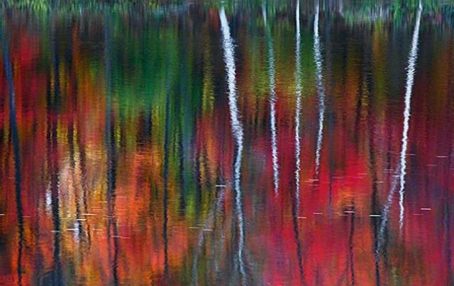 """""""Один"""" - $1 000 000. На своем сайте Питер Лик сообщал, что снимок был и будет единственным в своем роде. Кстати, сделан он был в Нью-Гэмпшире, на реке Андроскоггин, в Америке."""