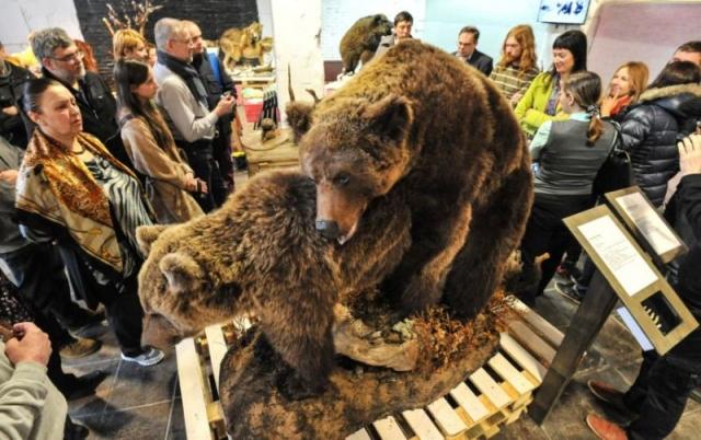 Самого автора выставки, художника-таксидермиста Павла Глазкова, это не смутило и вскоре он занялся встречей посетителей и рассказами о брачном поведении животных.