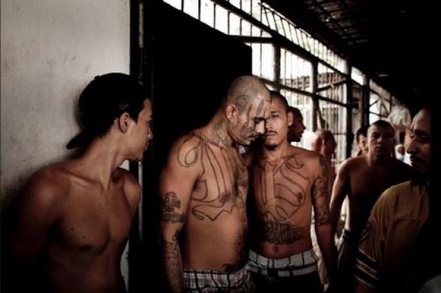 Ныне Mara Salvatrucha - самая многочисленная банда в мире. Из типично хулиганской и бандитской группировки муравьи выросли до хозяев американских улиц, они помогали не только своим родным сальвадорцам, но и беженцам из других неблагополучных регионов Америки.