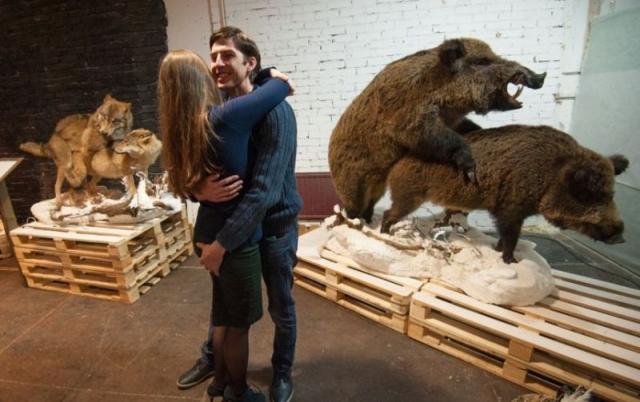 """""""Интимные тайны животных"""". Весной этого года подобная выставка открылась в Петербурге."""
