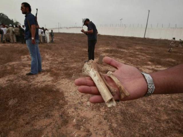 На территории тюрьмы был обнаружен пустырь, усеянный фрагментами костей.