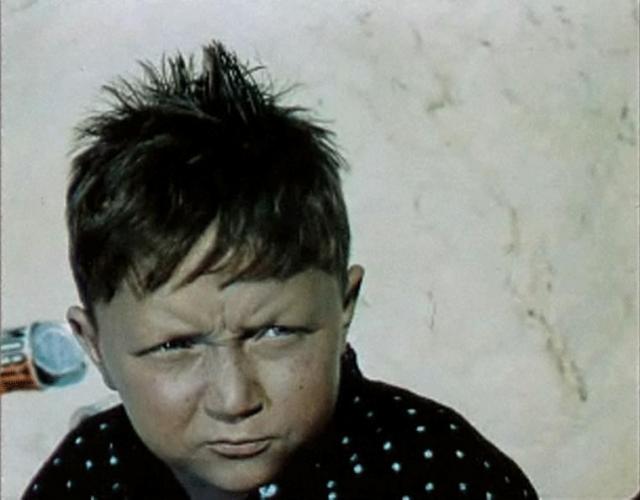 """После съемок в фильме """"Дубравка"""" пытался поступить во ВГИК, но не был принят. Отслужил в Советской Армии. После демобилизации стал завсегдатаем ипподрома. Сергей, вследствие своей известности и общительности, очень быстро стал там своим человеком."""