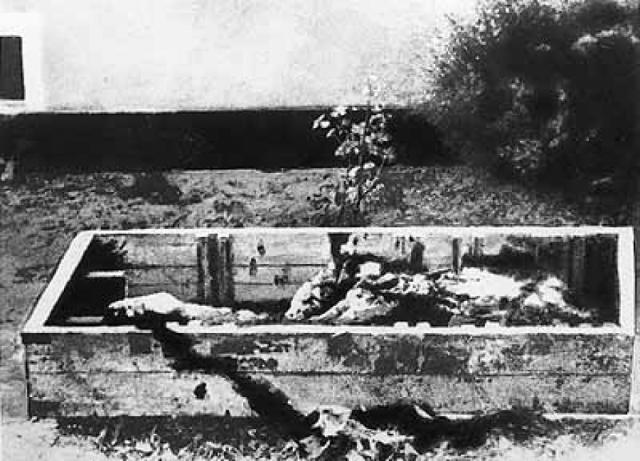 """13 марта 1970 года Андропов распорядился изъять и уничтожить останки Гитлера, Браун и четы Геббельс. Так появился план секретного мероприятия """"Архив"""", осуществленного силами оперативной группы Особого отдела КГБ 3-й армии ГСВГ."""