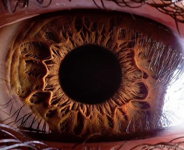 Если бы человеческий глаз был цифровой фотокамерой, то его разрешение составляло бы 576 мегапикселей. Эксперты считают, что человеческий глаз может различать 10 млн различных цветов.
