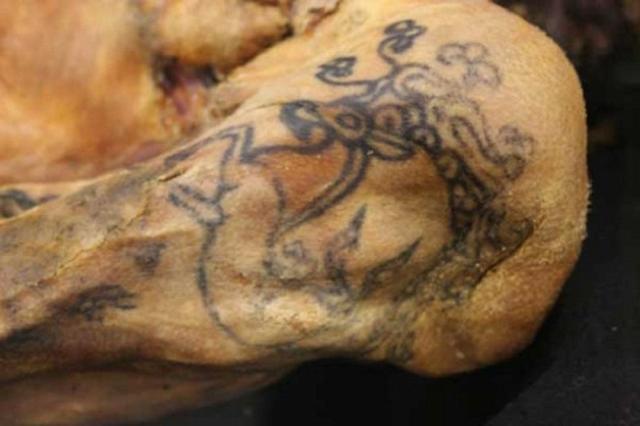 По данным исследователей, Укоке на момент смерти было 25 лет. На ее тату можно легко различить очертание мифического оленя с рогами козерога и клювом грифона.
