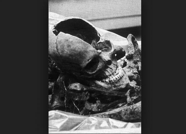 Принадлежность обнаруженных останков Борману была окончательно доказана в 1998 году после проведенной по заказу немецкого правительства экспертизы ДНК, затем они были сожжены и развеяны над Балтийским морем 16 августа 1999 года.