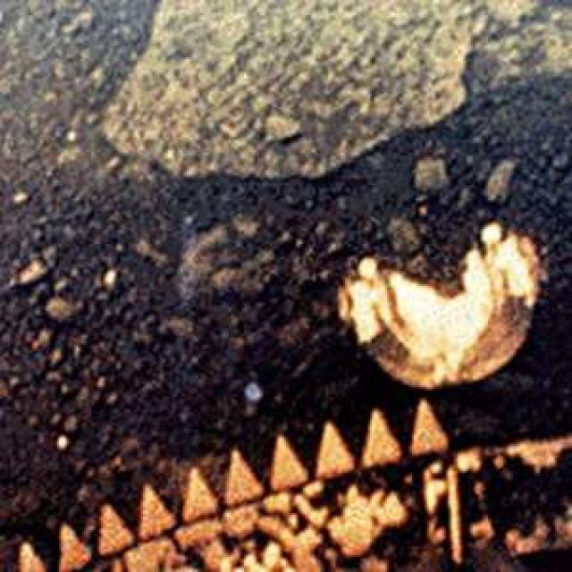 """Странный """"диск"""", изменяющий свою форму. """"Диск"""" имеет правильную форму, по-видимому круглую, диаметром около 30 см и напоминает крупную раковину."""