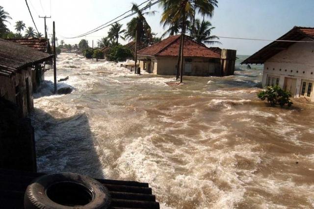 Шри-Ланка находится на расстоянии 1600 км от эпицентра землетрясения. Волна высотой от 5 до 10 м дошла до восточного побережья острова на 15 минут раньше, чем до Индии, и произвела несравнимо большие разрушения.
