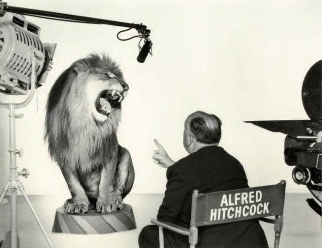 Альфред Хичкок , руководящий львом во время съемки легендарной заставки студии Metro-Goldwyn-Mayer, 1958 год