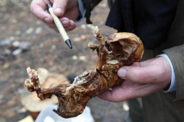 По словам Вячеслава Коновалова ему перекрыли кислород в 1992-м году, когда власти Украины пытались внушить населению, что последствия Чернобыльской катастрофы не так опасны.