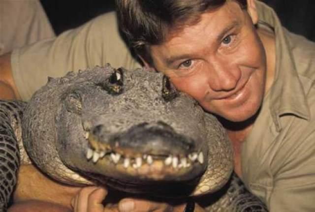 """Известный, как """"Охотник на крокодилов"""", Ирвин отснял 60 эпизодов своего собственного шоу о животных. Именно его увлечение его и сгубило: во время подводных съемок скат ударил его ядовитым хвостом прямо в грудь."""
