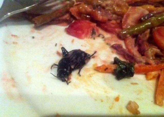 Съев половину блюда, девушка обнаружила в своей тарелке черного жука длиной около 2,5 сантиметров. Девушка утверждает, что выскочила из-за стола, испытав сильнейшее отвращение, и бросилась в туалет, где ее несколько раз стошнило.
