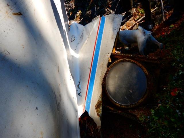 Все 9 членов экипажа и 72 пассажира погибли.