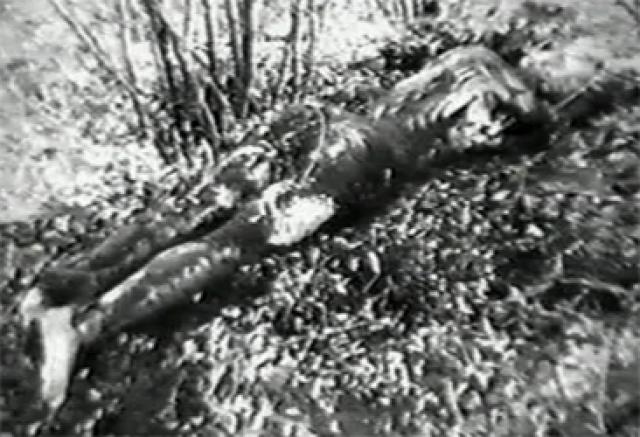 В следующем году он начинает убивать с новой силой. 16 мая 1987 года, находясь в командировке на Урале, Чикатило убивает 13-летнего Олега Макаренкова. Во время следующей командировки, уже в Запорожье, он совершает невероятно жестокое убийство 12-летнего мальчика. Третье убийство уже в Ленинграде - Юра Терешонок (16 лет).