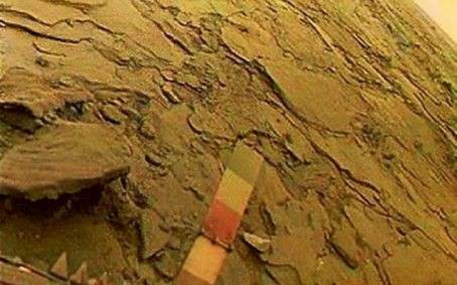 Объективы камер располагались на высоте 90 см от поверхности, с двух сторон аппарата. Качающееся зеркальце каждой камеры постепенно поворачивалось и создавало панораму в 177° по ширине, полосой от горизонта до горизонта. Так увидел бы планету человек в экспедиции на Венеру (на фото) .