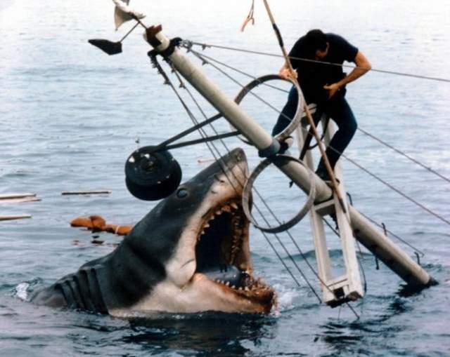 """Акула """"Челюсти"""" Один из известнейших фильмов Стивена Спилберга - одно из лучших доказательств того, что в кино страшнее то, что в основном скрывается от глаз. После """"Челюстей"""" десятилетия развития жанра хоррора принесли много новых приемов устрашения, но указанное правило осталось неизменным."""