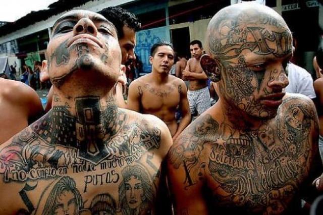 """Mara Salvatrucha (MS-13) , что в переводе с латиноамериканского сленга буквально означает """"бродячие муравьи"""". В 1980 годы в США эмигрировало около миллиона человек, это только из Центральной Америки, стоит ли говорить, какую репутацию имели беженцы. В борьбе за свои права они создавали группировки. Так на свет появилась La Mara Salvatrucha."""
