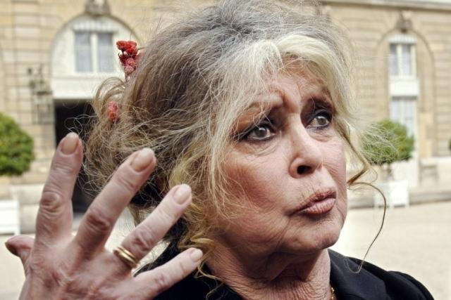 """Она говорит, что французские политики это """"флюгера, показывающие влево или вправо, пока фантазия управляет ими… даже французские проститутки не такие, как они"""", а современное искусство это """"говно, как буквально, так и образно""""."""