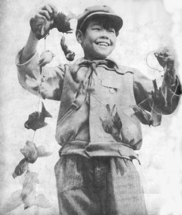 А к первой декаде ноября того же года в Китае, по неполной статистике, было истреблено 1,96 млрд воробьев.