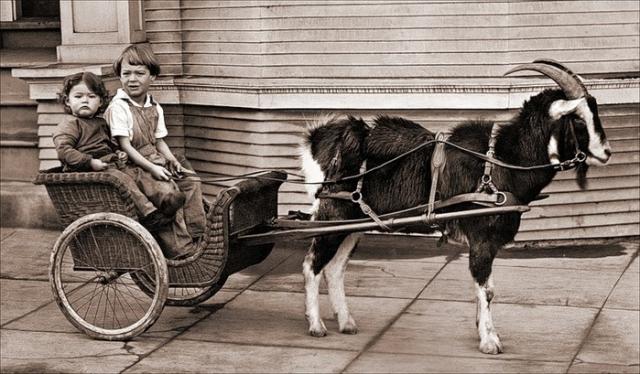 Детская коляска. Первая детская коляска появилась при дворе Уильяма Кавендиша 3-го герцога Девонширского, отца шестерых детей, который в 1733 году заказал Уильяму Кенту коляску для своих детей. Собственно, это была не коляска в нашем понимании, а небольшая детская повозка, в которую запрягалась коза или пони.